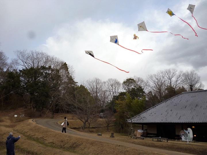 新型コロナに打ち克て!  一年の計は凧揚げにあり