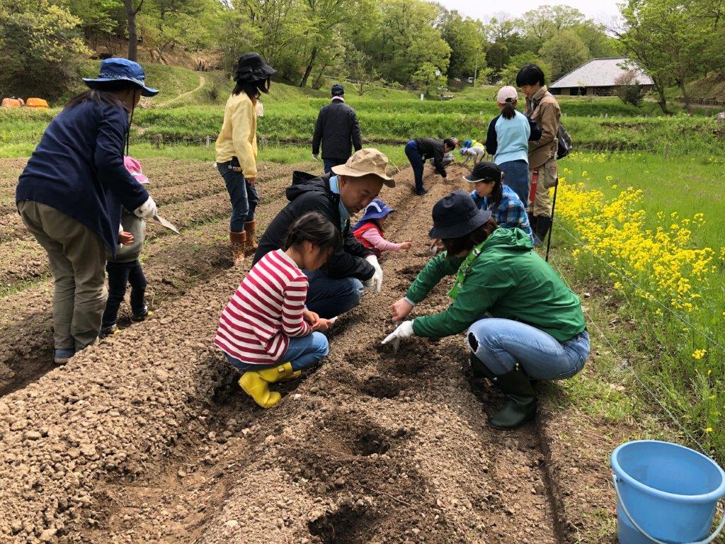 里山保全ボランティア体験(森もりの日)
